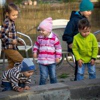 дети :: Лариса Тарасова