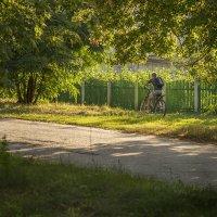 Велосипедист :: Вера Сафонова