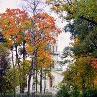 В парке осенью   /9/   Белая башня :: Сергей
