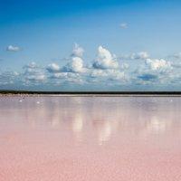 Розовое озеро :: Yaroslav Color Цветков