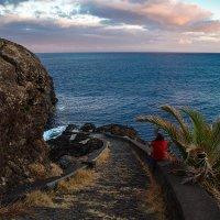 Остров Мадейра :: Eduard .