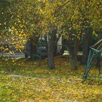 One golden glance :: Дмитрий Костоусов