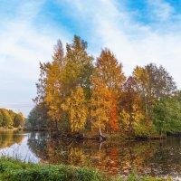 Осени краски :: Виталий