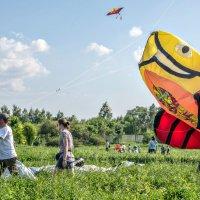 Вот из бездны дней вырываются  воздушные змеи... :: Ирина Данилова