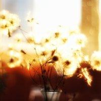 Безмятежность  заката.. :: Ирина Сивовол
