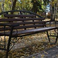 В парке :: grovs
