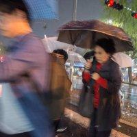 когда дождь сам всё рисует :: Sofia Rakitskaia
