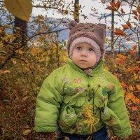 В осеннем саду :: Вера Сафонова