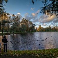 Осенний этюд 2 :: Юрий Бутусов
