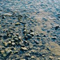 Просто камни в воде понравились :: Дмитрий Конев