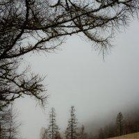 Чёрные дороги к белым вершинам :: Алексей (АСкет) Степанов