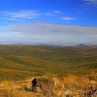Осеннее утро на плато Бийчесын. :: Vladimir 070549