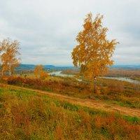 Пасмурная погода :: Анатолий Иргл