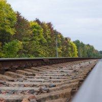 Железная дорога осенью :: Денис Samuila