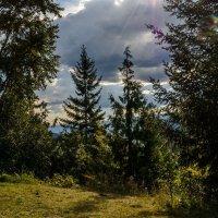 Солнечная поляна :: Константин Шабалин