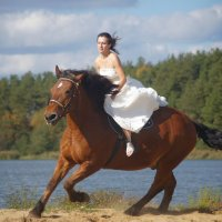Сбежавшая невеста :: Кристина Щукина