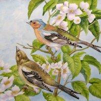 Птички ) :: rv76