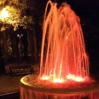 Парковый фонтан :: Длинный Кот