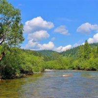 Река зелёные берега :: Сергей Чиняев