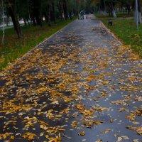 Осенняя перспектива :: Albina