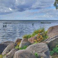Плещеево озеро :: Алексей Михалев