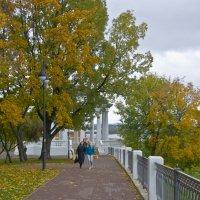 В парке над Вяткой. :: Андрей Синицын