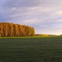 Золотая осень :: Алексей Логинов