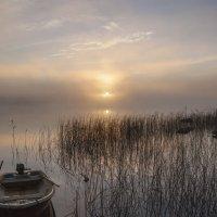где ты, рыбак? :: liudmila drake