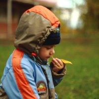осень на носу... :: Игорь