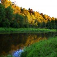 Вечер на реке :: Владимир Брагилевский
