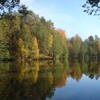 осень-она не спросит... :: Евгения Куприянова