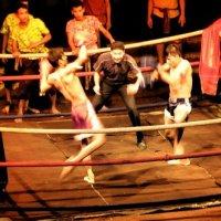 тайский бокс :: Таня