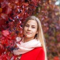 Яркая осень :: Ирина Kачевская
