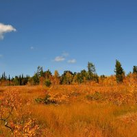 Осень в горах :: Милешкин Владимир Алексеевич