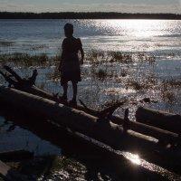 Река :: Владимир Семёнов