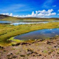 Перу. Высокогорье Андийских Кордильер :: Андрей Левин