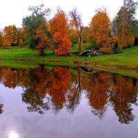 золотая осень прекрасна :: анастасия артемьева