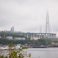 мост на остров Русский :: Александр Чупин