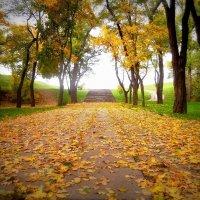 По дороге к осени :: оксана косатенко