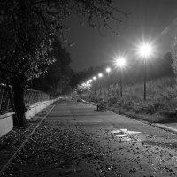 Когда на город спускается ночь :: Алексей Соминский