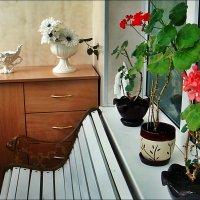 На моём балкончике :: Нина Корешкова