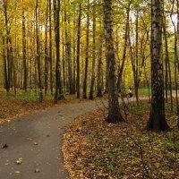 Осенние будни парка :: Андрей Лукьянов