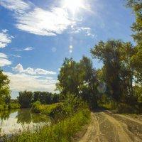 Река Тула в Новосибирске :: Дима Пискунов