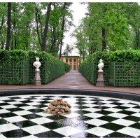 Летний сад в дождь :: Наталья