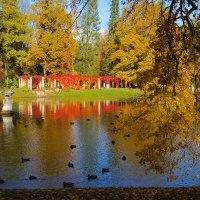 Осень в Ораниенбаум :: Михаил ЯКОВЛЕВ