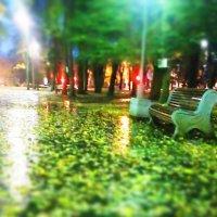 Ранним утром в парке :: Валентина Ломакина