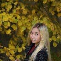 настроение-осень :: Ольга Гребенникова