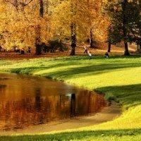 Осеннее настроение...солнечное :: Ирина Румянцева