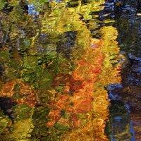 Осенняя аква-мозаика :: Ирина Румянцева