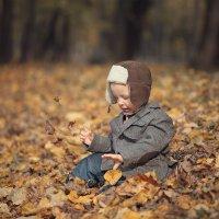 Осенний Степка :: Anna Lipatova